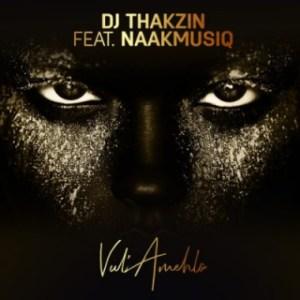 DJ Thakzin - Vul'Amehlo ft. NaakMusiQ